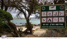 Südafrika #7: Die Pinguine von Betty's Bay (Stony Point) Stony Point, Beach, Photos, Pictures, The Beach, Beaches