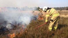 Heidebrand in Hoenderloo