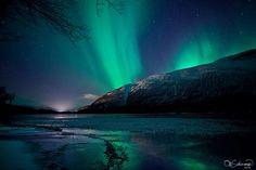 . Star Painting, Aurora, Northern Lights, Dark, Travel, Inspirational, Viajes, Destinations, Nordic Lights