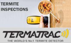 Best Pest Control, Bug Control, Control Techniques, Integrated Pest Management, Termite Inspection, Pulling Weeds, Termite Control, Pest Solutions, Melbourne