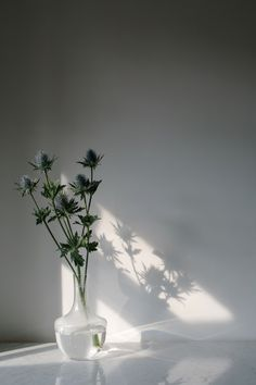 Summer Shadow - Light: By Wolves Table