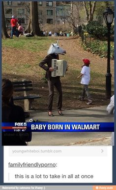 Funny news story: TV~ Unicorn playing accordion ~ baby born in Walmat Wtf Funny, Funny Posts, Funny Stuff, Funny Things, Random Stuff, Random Humor, Crazy Funny, Can't Stop Laughing, Funny Memes