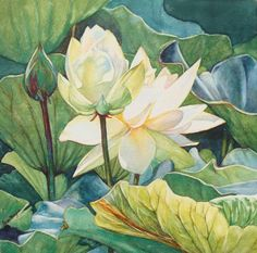 Watercolor by Fran Mangino htt://www.midlifeseries.com