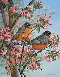 Robins in Springtime by Marc Hanson