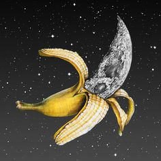 Lunar Fruit by James Ormiston #collage