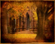 autumn cathedral | da little~ny