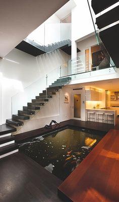 Modern + fish pond