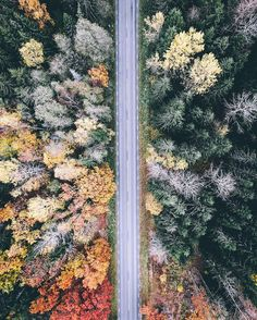 Take a country road ride through Sweden with aerial content creator @airpixels // Your source for GoPro, Drone & Mobile Gear // www.GoWorx.com