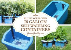 Variations of self watering containers, self-watering grow boxes, or self-watering planters are sold online, but you can make them yourself for much less.