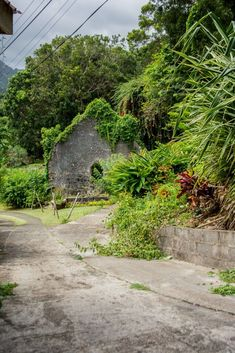 I have discovered the most beautiful spots and the most delicious dishes in Grenada for you. What else awaits you if you are planning more than just a beach holiday, you can read here. Delicious Dishes, Beach Holiday, Source Of Inspiration, Grenada, Most Beautiful, Sidewalk, Around The Worlds, Sparkle, In This Moment
