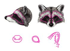 How to Draw Animals: Red Pandas and Raccoons - Tuts+ Design & Illustration Tutorial