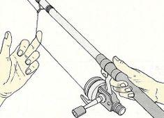 Die 10 besten Bilder zu Angeln | angeln, fische, hechtangeln