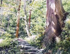 A Watercolor Artist Abe Toshiyuki Watercolor Landscape Paintings, Watercolor Trees, Watercolor Artwork, Nature Paintings, Watercolor And Ink, Landscape Art, Art Aquarelle, Web Gallery, Watercolor Techniques