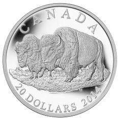 """Item specifics Seller Notes: Pcs, Uncirculated Proof Coin, with OGB & COA"""" Certification Number: No Weight: 1 oz Circulated/Uncirculated: Uncirculated Country/Region. Canadian Coins, Canadian History, Native Canadian, Mint Coins, Silver Coins, Old Coins, Rare Coins, Silver Investing, Coin Store"""