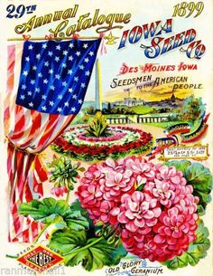 1899 Iowa Seed Co Vintage Flowers Seed Packet Catalogue Advertisement Poster | eBay