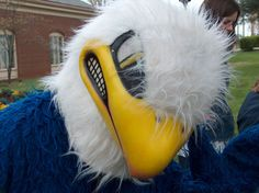 Midway University provides students with a number of opportunities to become involved in social, recreational, educational and cultural activities throughout the semester. Eagle Mascot, Go Eagles, Pheonix Costume, Student, Activities, Ideas, Thoughts
