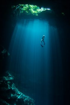 """Free diving Serenity"" in Tulum, Mexico"
