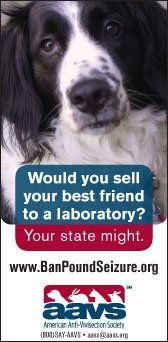 Would you sell your best friend to a laboratory - your state might
