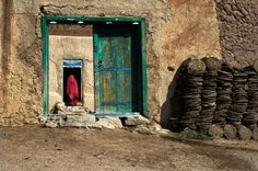 Home Again | Steve McCurry