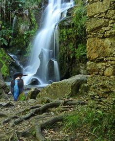 Cascata da Cabreia no Verão, Silva Escura - Sever do Vouga