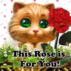 Une  rose pour toi.