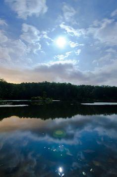 Pandapas Pond Reflections