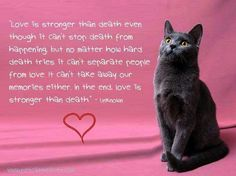 Love stronger than death