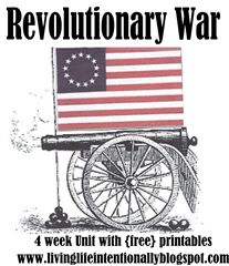 revolutionary war ideas