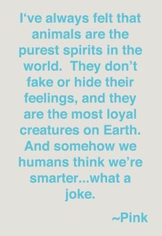 I love the singer PINK!! And totally love her quote!