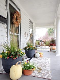 Fall Container plants at Bungalow Airbnb Fall Container Plants, Fall Containers, Container Gardening Vegetables, Container Flowers, Beautiful Space, Beautiful Homes, Ground Covering, Fall Planters, Back Patio