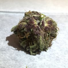 Introducing Sublime Fruity Purple Potion - a NEW LeafLife AZ exclusive cross!    Fruity Chronic Juice X Love Potion #9 X Purple Monkey Balls   Sweet, light and mellow with a dark purple color. Sports a pungent mix of earth and fruit smells. Not a heavy or heady high, it's very relaxing - perfect for chilling with friends.