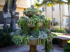 Container Gardens for Succulents - great post shows how cracked garden fountains have been reused as containers - via ABC of Succulents: Sources
