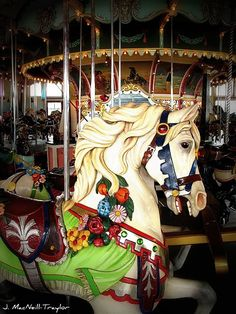 Paragon Carousel - Hull, MA  The most beautiful carousel. <3