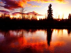 Pike's Waterfront Lodge - Fairbanks, Alaska