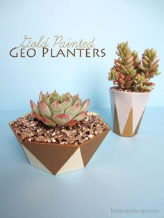 Gold painted geo planters   Homey Oh My!