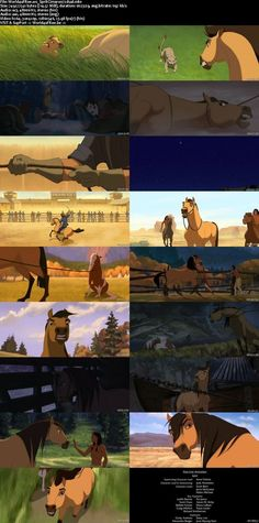 Sad being separated by your mom Spirit Horse Movie, Spirit The Horse, Spirit And Rain, Dreamworks Animation, Disney Animation, Animation Film, Spirit Der Wilde Mustang, Wilde Mustangs, Kiger Mustang