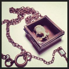 Real Rodent Skull Brass Shadow Box Necklace by TheArtOfDecay, $60.00