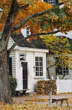 Colonial Williamsburg in the fall... ahhh I would put a tire swing in the tree and call it my home <3