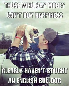 happiness is owning an english bulldog