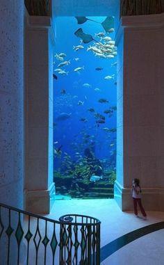 The Atlantis Paradise Island Resort - Bahamas