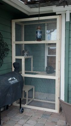 LOVE this screened in outdoor cat area.. My inside cats would LOVE to be able to climb out a window for some fresh air #catio #catmomma #apartmentgarden