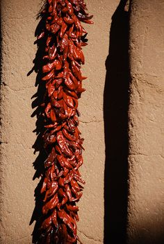 Ristra: Reminiscent of what you see in or outside of homes in NM. Just beautiful. Feeling homesick !