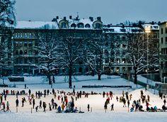 Ice skating in Vasaparken (Stockholm), until March 15.