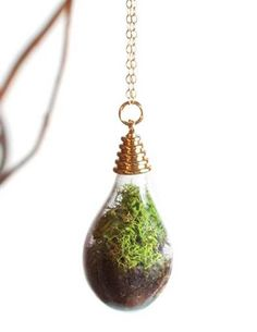 Teardrop Terrarium Necklace from Victorian Trading Co.