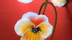 Pansy painting by Renjitha Anoop