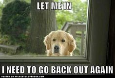 A door is what a dog is always on the wrong side of. (Ogden Nash...I think.)