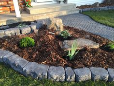My Portfolio, Plants, Flora, Plant, Planting