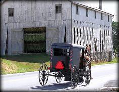 f09e702153f873337e584ca48656e94c--lancaster-pennsylvania-amish-country.jpg (550×427)