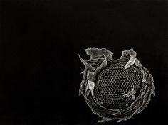 Julie Niskanen Prints - Yahoo Image Search Results