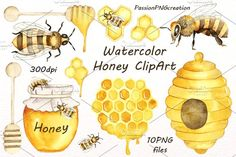 Watercolor Honey Clipart by PassionPNGcreation on @creativemarket